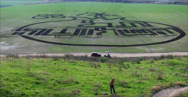 ציור השדה של פטר וינר בעמק המעיינות. (צילום באדיבות עמותת עמק המעיינות)
