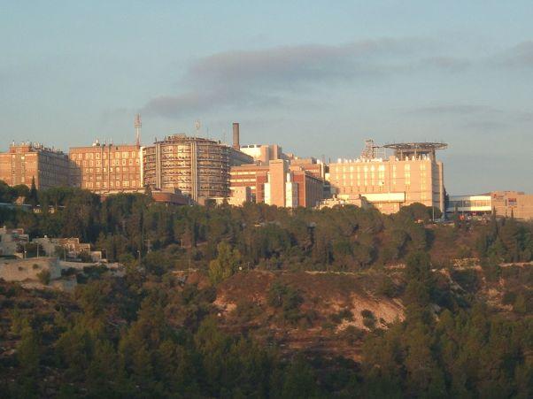 מרכז רפואי הדסה (צילום: ויקימדיה)