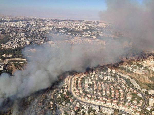 נמשכים המאמצים לכיבוי השריפה שפרצה בעין כרם בירושלים