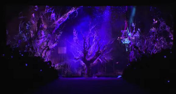 היער הקסום של דולצ