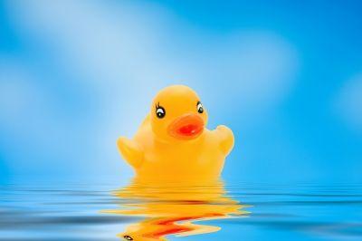 לא ידעתי שאמבטיה יכולה להיות קרקס של אהבה