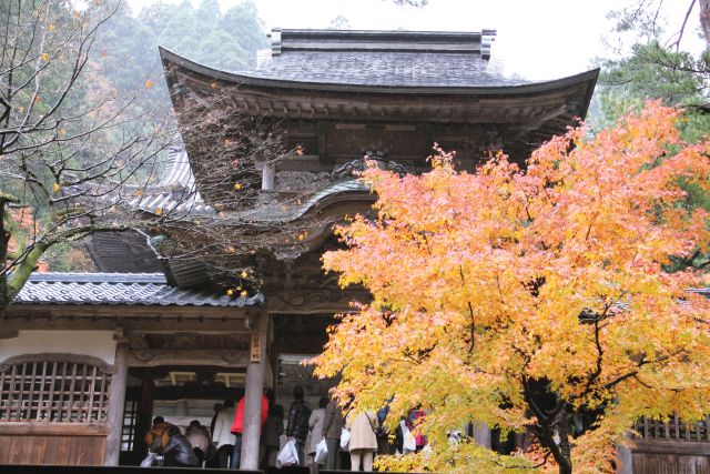 מקדש ביפן. יפן היא המדינה המפותחת ביותר באסיה וכלכלתה היא השלישית בגודלה בעולם. (צילום: אתר התיירות הרשמי)