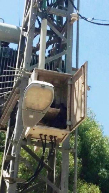 צילום: דוברות חברת חשמל