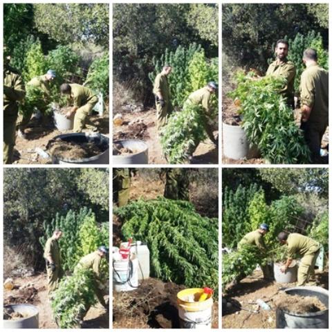 צילום השדה - דוברות משטרת ישרא