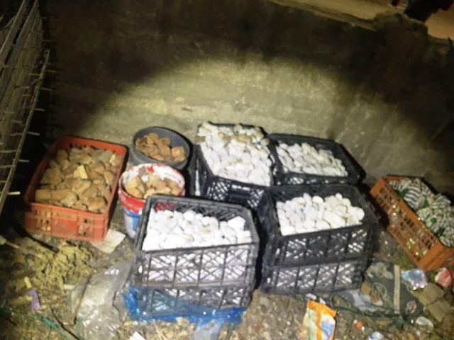 ארגזים ודליי אבנים ליידוי (צילום: משטרת ישראל)