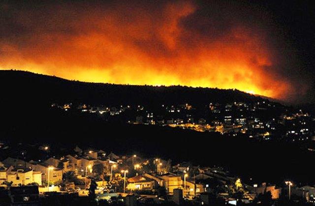 שריפה בכרמל (צילום מסך)