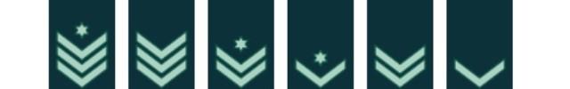 סולם הנגדים בצבא