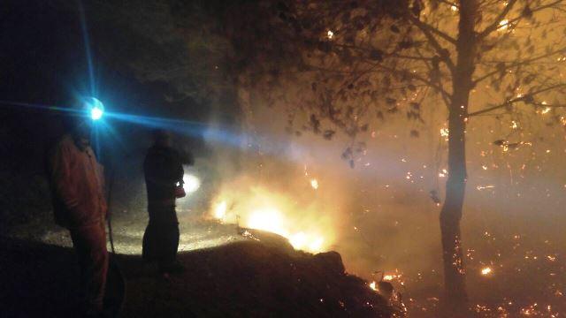 צילום: כיבוי אש מחוז חוף