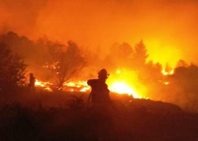 """ליל השריפה בנווה צוף (צילום: דוברות כיבוי והצלה איו""""ש)"""