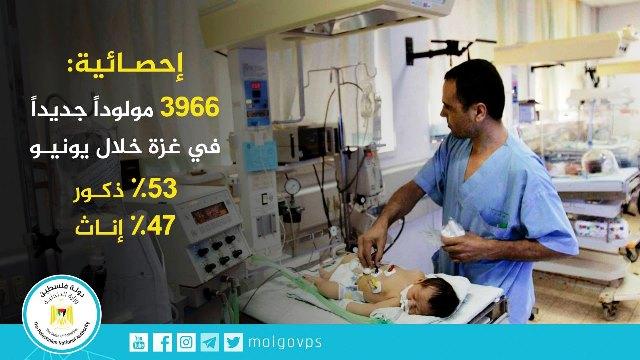צילום ועריכה משרד הבריאות הפלסטיני ברצועה