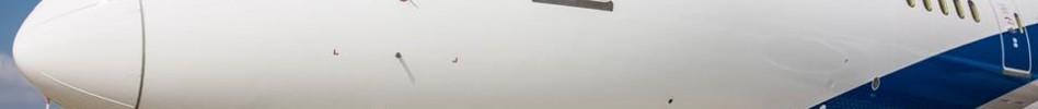 """זעם בקרב עובדי אל על (צילום יח""""צ: אתר אל על)"""