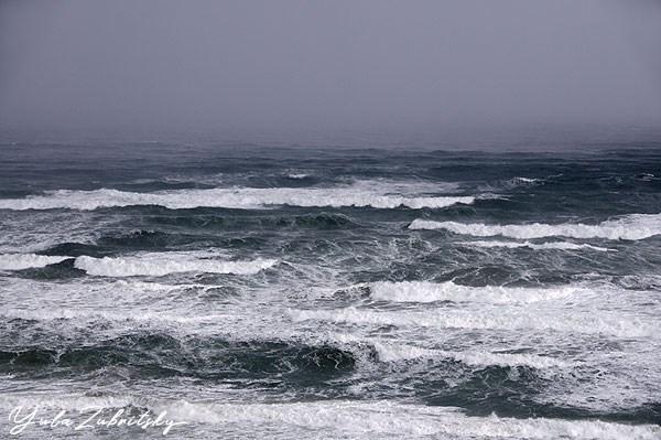 סערה. צילום: יולה זובריצקי