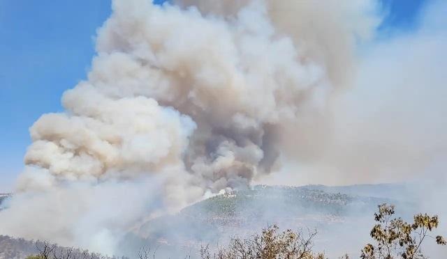 השריפה בהרי ירושלים – הושגה שליטה במרבית מוקדי השריפה